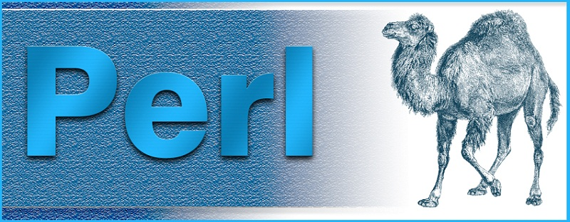 perl-training-in-chennai